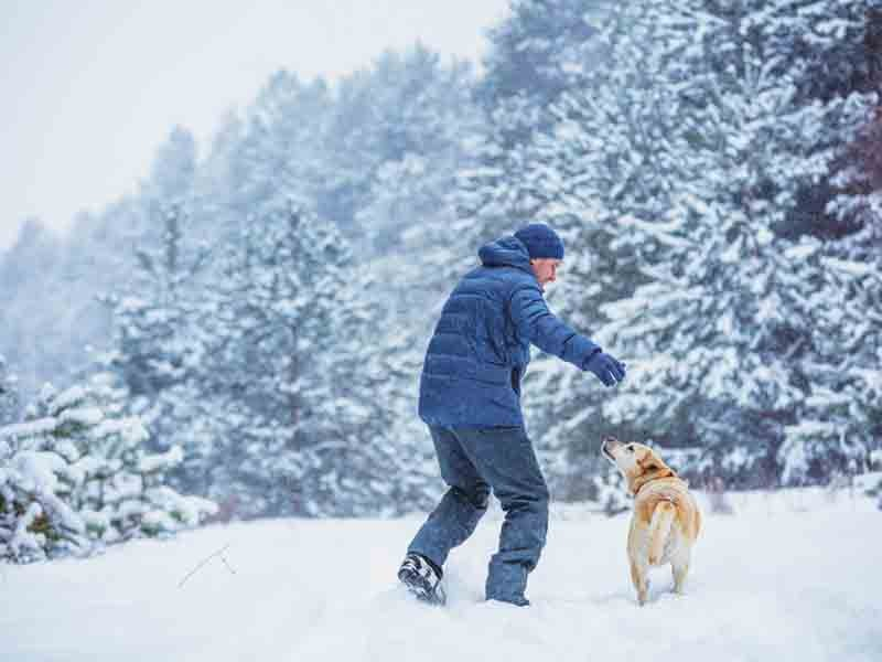 Man with dog plays in snowy forest in winter