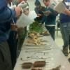 AEL1J students: plant identification