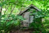 Small log cabin in a wooded area