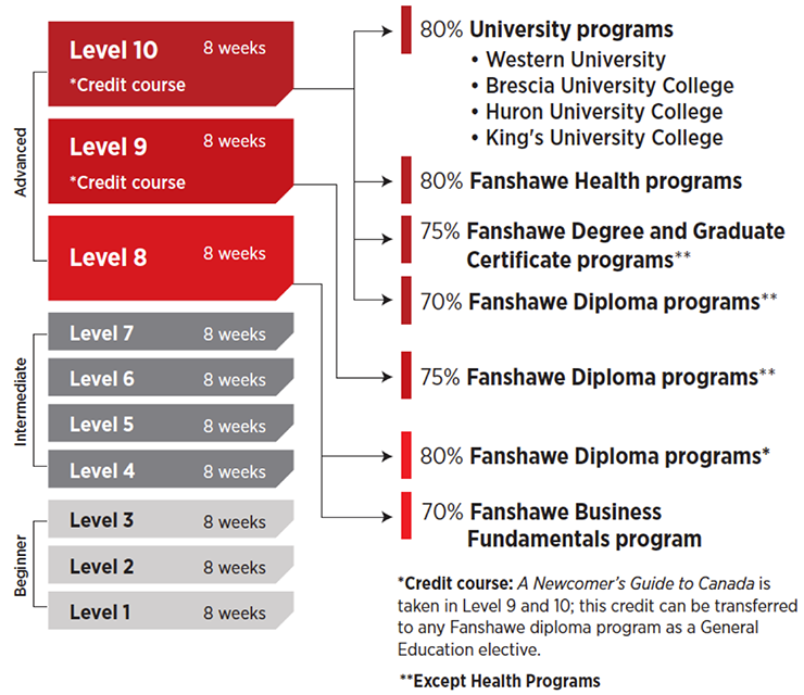 Chart: English for Academic Purposes (EAP) levels