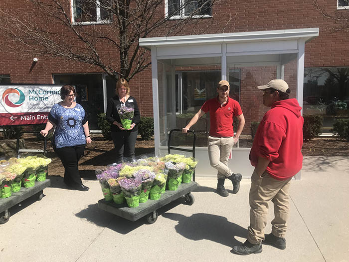 Hydrangeas donated to McCormick Home by Fanshawe's Horticulture Technician program