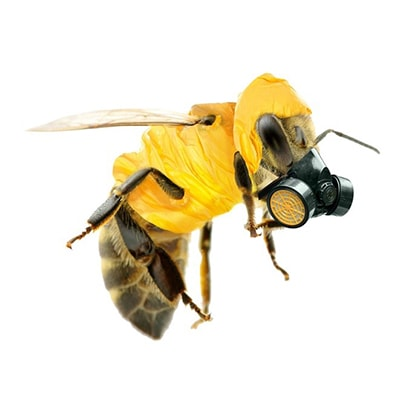 Honey bee with gas mask image