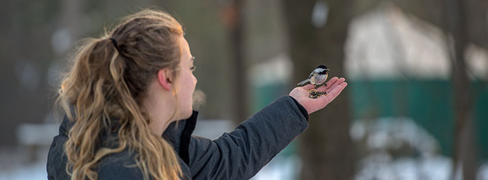 Student feeding birds outside during the winter